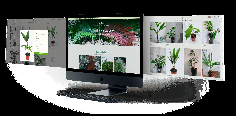 diseño web 3 pantallas